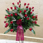 Cuscino rose rosse